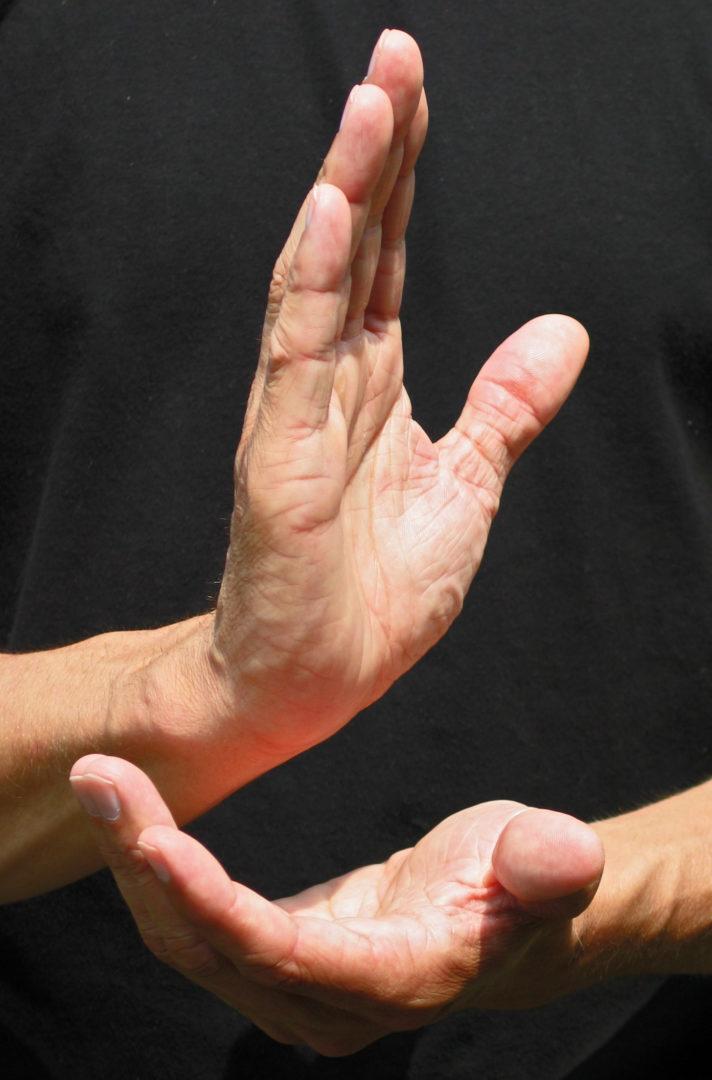 Handhaltung in der chinesischen Kampfkunst