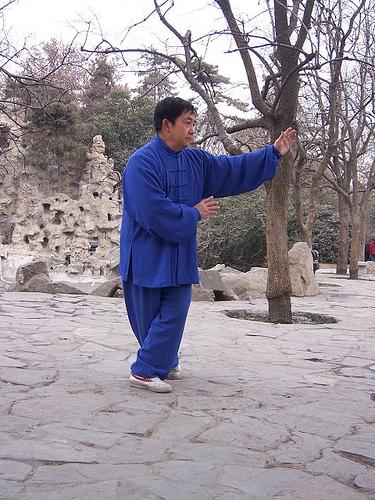Ba Gua Meister zeigt die Drachenhand